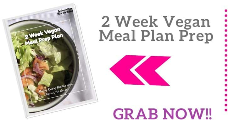 2 week vegan meal plan and pdf vegan meal plan and grocery list
