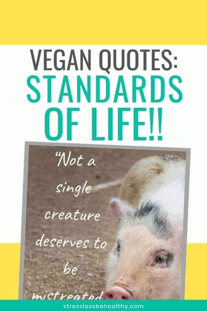 Vegan Quotes: For Health, the Planet, & the Animals!