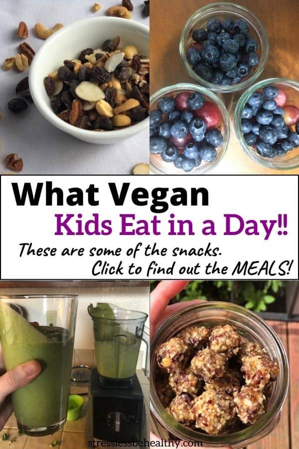 What We Ate Today; Easy Vegan Meals {What Vegan Kids Eat}